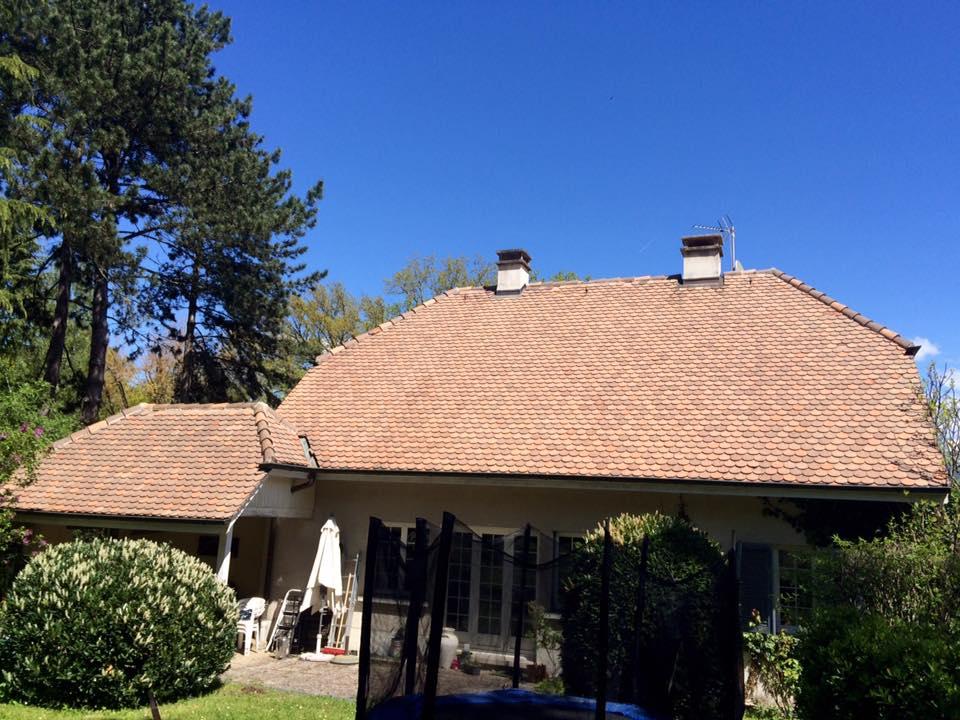 sos demoussage nettoyage de toiture dans le canton de gen ve. Black Bedroom Furniture Sets. Home Design Ideas